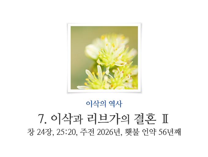 book_195.jpg