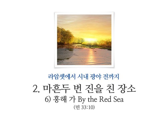 book_255.jpg