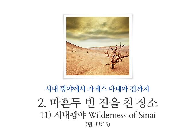 book_261.jpg